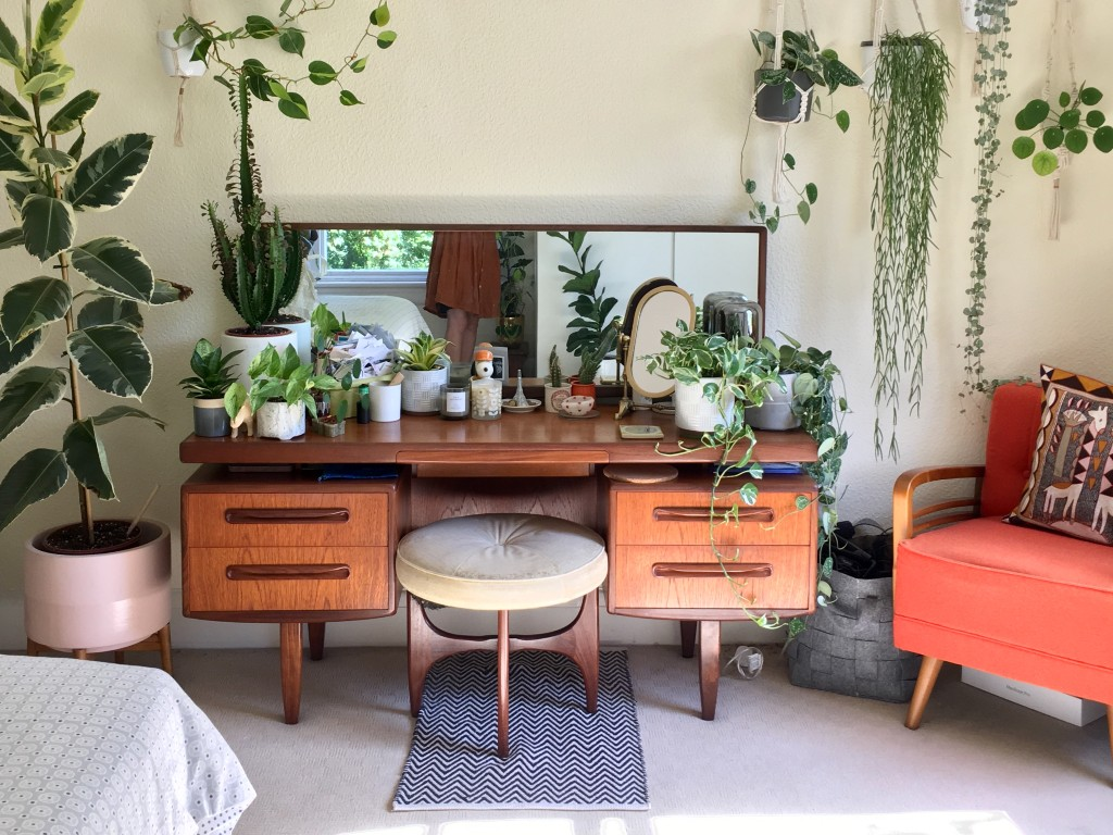 Tips for looking after your houseplants | vintage homeware blog